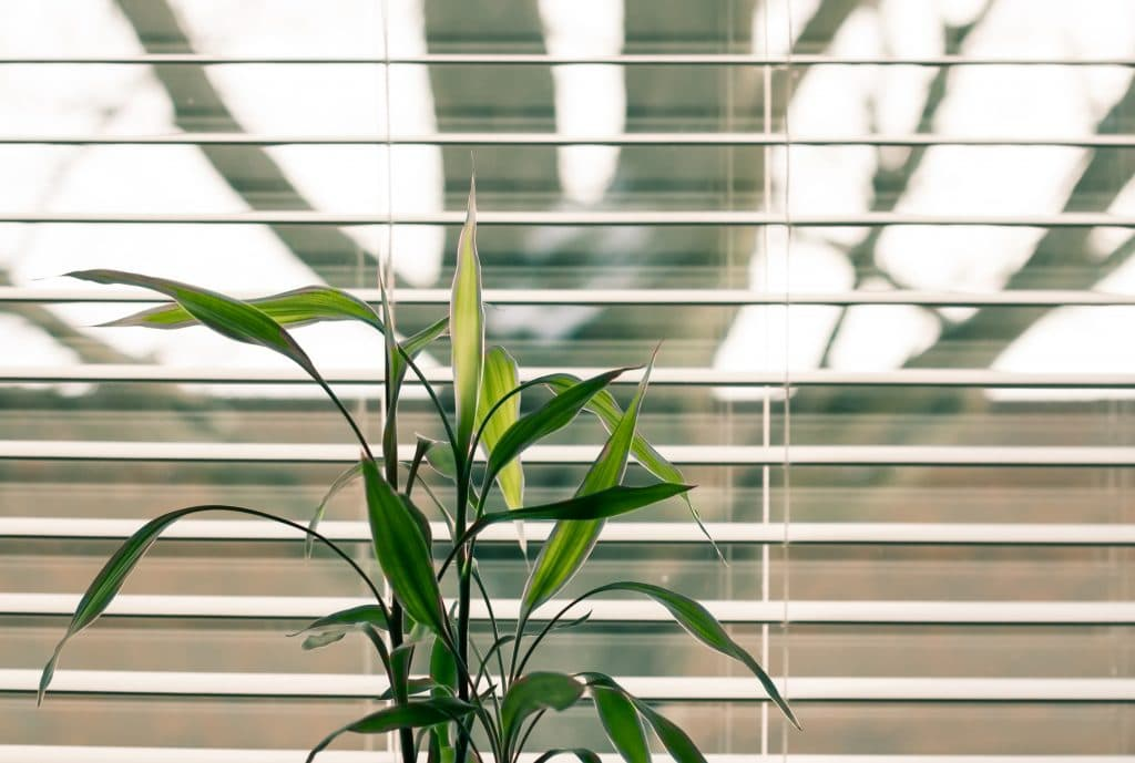 10 Tips to Keep Your Calgary Home Cool in the Summer Months